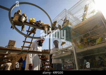 Doha, Qatar. 11th Dec, 2017. Birds for sale at the Souq Waqif market. Credit: Valery Sharifulin/TASS/Alamy Live - Stock Photo