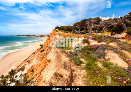 Coastline at Ohos de Aqua near Albufeira, Algarve, Portugal in spring with Hottentot Fig (Carpobrotus edulis) flowers - Stock Photo