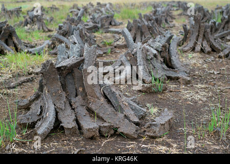 turf stacked - Stock Photo