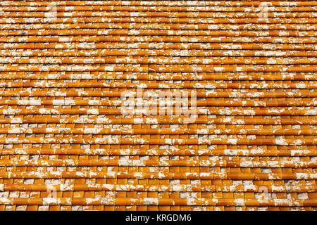 Clay Tile Roof Orange Pattern Moss Tiles Stock Photo