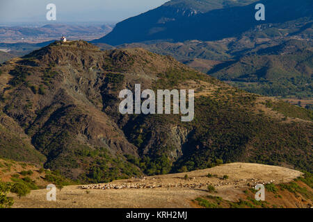 Panoramic view of shepherds and grazing sheep and goats on a plateau with church on distant hill in a mountain area - Stock Photo