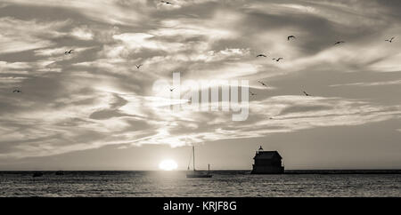 Seagulls fill the sky as the sun sets behind the lighthouse pier at Grand Haven, Michigan, on Lake Michigan - Stock Photo