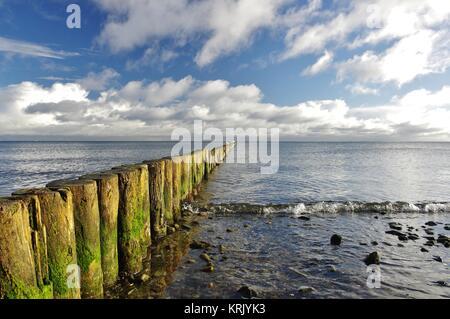 groynes on the beach of boltenhagen,district redewisch,mecklenburg-west - Stock Photo