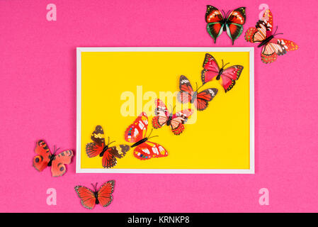 decorative butterflies in a white frame on a colored background ...