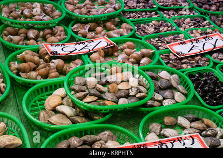 Kanazawa - Japan, June 8, 2017: Fresh seafood in green plastic baskets at the Omicho Market - Stock Photo
