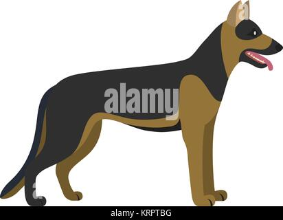German shepherd dog breed - on white background. Vector illustration - Stock Photo