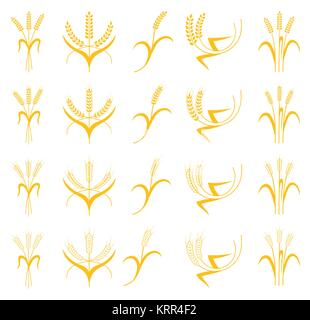 Ears of Wheat, Barley or Rye vector visual graphic icons set, ideal for bread packaging, beer labels etc. Agricultural - Stock Photo