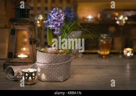 Delicate purple hyacinth on vintage kitchen lit with candles - Stock Photo