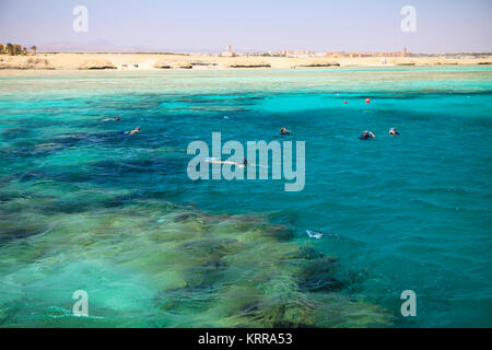 Beautiful coral reef in Marsa Alam, Egypt - Stock Photo