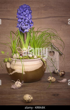 Delicate blue hyacinth on wooden background. Happy Easter! - Stock Photo