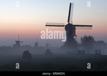 Historical windmills in the early morning fog at dawn, UNESCO World Heritage Site, Kinderdijk, province of South - Stock Photo