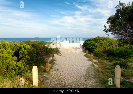 Pathway Over Sand Dunes to the Beach at Wollongon Australia - Stock Photo