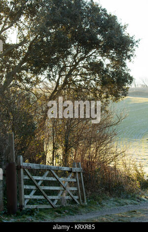 Countryside Gate and Track - Stock Photo