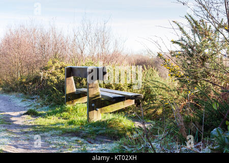 An empty wooden bench on a cold sunny winters day, Dorset, United Kingdom - Stock Photo