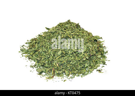 mint and dried mint pictures - Stock Photo