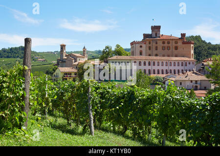 Barolo vineyard and medieval castle in Piedmont on Langhe hills in Italy. - Stock Photo