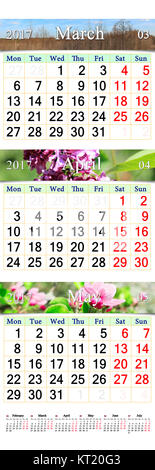 triple calendar for March April and May 2017 with spring pictures - Stock Photo