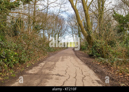 walking path made of old tar in a park - Stock Photo