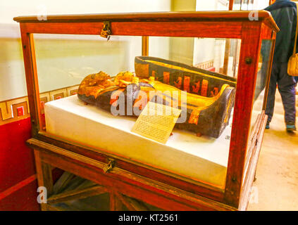 The smaller of the wooden coffins from King Tutankhamen's tomb Egyptian Museum of Antiquities, Cairo, Egypt - Stock Photo