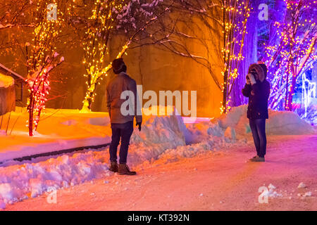 A couple taking photographs at the Calgary Zoo's winter Zoolights venue - Stock Photo