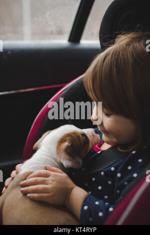A toddler and a 6 week old pit bull beagle mix share a kiss while riding in a car. - Stock Photo