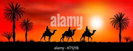 Caravan of camels at sunset - Stock Photo