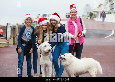 Hastings, East Sussex, UK. 22nd December 2017. This family gets into the Christmas cheer, and even the dogs get - Stock Photo