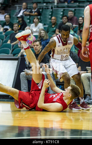 Honolulu, Hawaii. 22nd Dec, 2017. during the action between the Davidson Wildcats and the New Mexico Aggies at the - Stock Photo