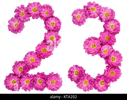 Arabic numeral 23, twenty three, from flowers of chrysanthemum, isolated on white background - Stock Photo