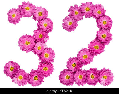 Arabic numeral 32, thirty two, from flowers of chrysanthemum, isolated on white background - Stock Photo