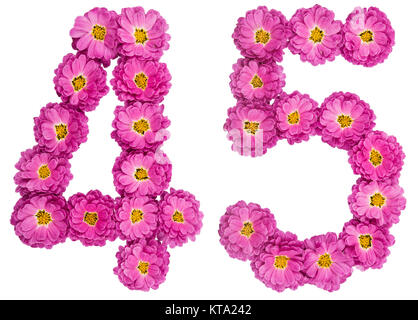 Arabic numeral 45, forty five, from flowers of chrysanthemum, isolated on white background - Stock Photo