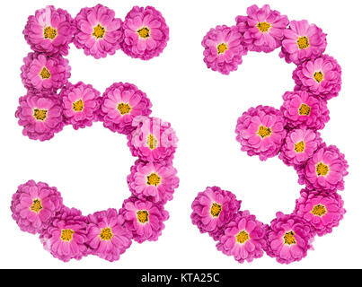 Arabic numeral 53, fifty three, from flowers of chrysanthemum, isolated on white background - Stock Photo