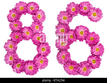 Arabic numeral 86, eighty six, from flowers of chrysanthemum, isolated on white background - Stock Photo