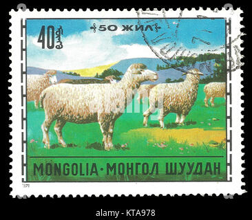 Mongolia - Stamp 1971: Color edition on topic of Animal Husbandry, shows Domestic Sheep Ovis ammon aries - Stock Photo