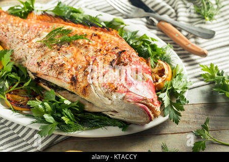 Homemade Grilled Whole Red Snapper with Lemons and Dill - Stock Photo