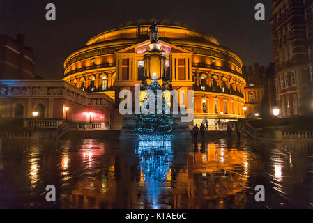 Christmas tree in front of the Royal Albert Hall at night, South Kensington, London, England, UK - Stock Photo