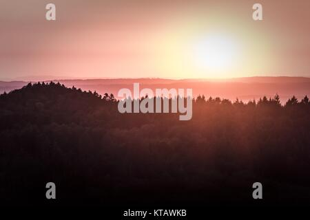 wonderful magic sunshine over a german forest - Stock Photo