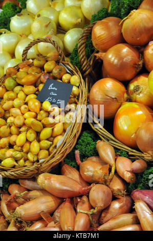 various types or varieties of onions on a fresh fruit and vegetable stall at Borough market in London. Shallots, - Stock Photo