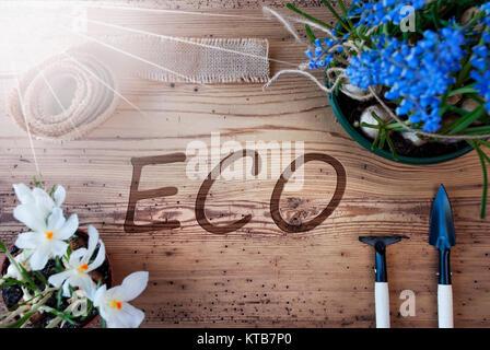 English Text Eco. Sunny Spring Flowers Like Grape Hyacinth And Crocus. Gardening Tools Like Rake And Shovel. Hemp - Stock Photo