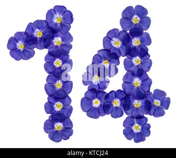Arabic numeral 14, fourteen, from blue flowers of flax, isolated on white background - Stock Photo