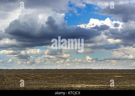 Weather change over wheat field field on a dark cloudy sky, weather change. Sun rays. - Stock Photo