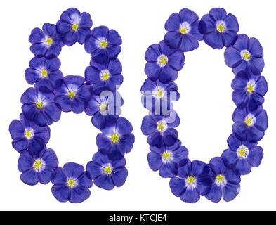 Arabic numeral 80, eighty, from blue flowers of flax, isolated on white background - Stock Photo