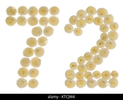 Arabic numeral 72, seventy two, from cream flowers of chrysanthemum, isolated on white background - Stock Photo