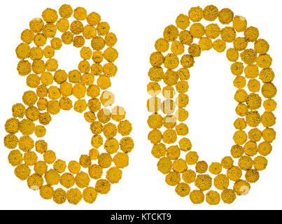 Arabic numeral 80, eighty, from yellow flowers of tansy, isolated on white background The tansy - a plant of the - Stock Photo