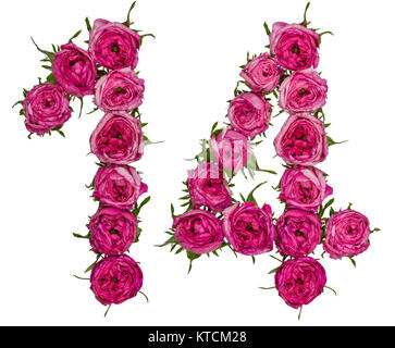 Arabic numeral 14, fourteen, from red flowers of rose, isolated on white background - Stock Photo