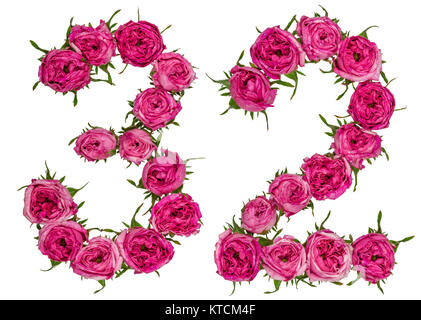 Arabic numeral 32, thirty two, from red flowers of rose, isolated on white background - Stock Photo