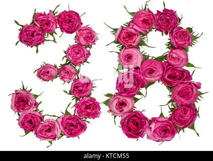 Arabic numeral 38, thirty eight, from red flowers of rose, isolated on white background - Stock Photo