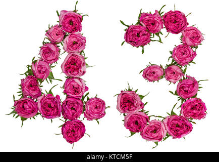 Arabic numeral 43, forty three, from red flowers of rose, isolated on white background - Stock Photo