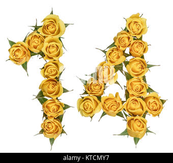 Arabic numeral 14, fourteen, from yellow flowers of rose, isolated on white background - Stock Photo