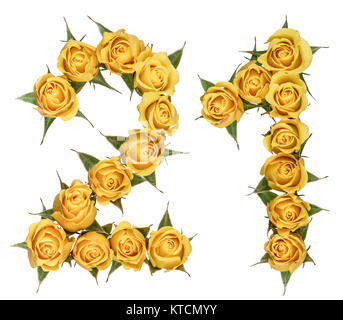 Arabic numeral 21, twenty one, from yellow flowers of rose, isolated on white background - Stock Photo